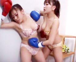 【キャットファイトレズ動画】女同士の本気の殴り合い…顔面、腹と容赦無いパンチを浴びせる巨乳ギャルww